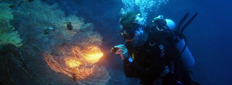 linternas led buceo fenix